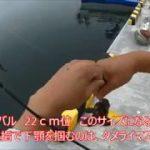 堤防からのロックフィッシュ  日本最東端の港へ  20180821