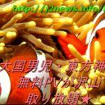大国男児・東方神起 新曲/フル