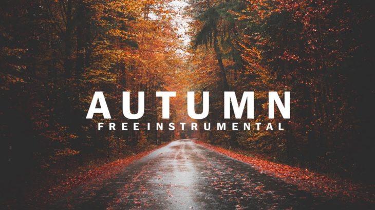 A U T U M N | R&B × Type Beat × [FREE] | Instrumental