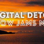 【癒しのR&B名曲】デジタルデトックス ~Slow Jams Mix~【眠れる曲】