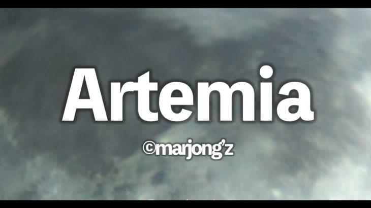 Artemia [MV Original mix.]