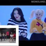 【ダンス練習】K-POP 踊ったら負けチャレンジ DANCE PRACTICE