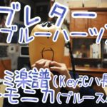 LV.15~39「ラブレター (ブルーハーツ)」ドレミ楽譜 ハーモニカ(ブルースハープ)
