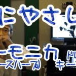 LV.33「人にやさしく / ブルーハーツ」ハーモニカ(ブルースハープ)ドレミ楽譜 / Harmonica