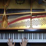 【公式】Magnolia / DEEMO ピアノコレクション(Music Video)《演奏:Jacob Koller》