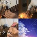 【ギター】RADWIMPS/スパークル 弾いてみた 【多重録音】-Sparkle Acoustic guitar cover