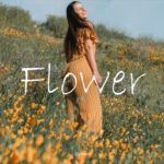 """""""Flower"""" Relaxed/Calm/Lo-Fi/Hiphop/R&B/instrumental(Prod.Chewiser)"""