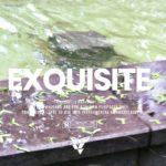 """Exquisite"" – Relax Piano Rap Beat | Free Trap R&B Hip Hop Instrumental Music 2019 | Instrumentals"
