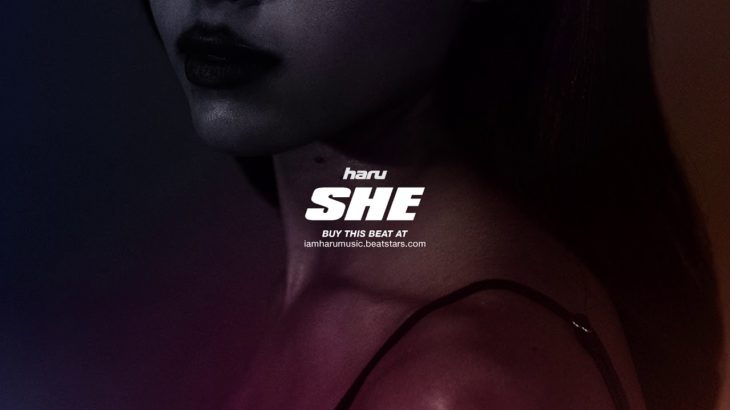 Tory Lanez Type Beat – SHE | R&B Dancehall Instrumental 2019 (@prodbyharu)