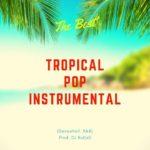 'The Best' – Tropical Summer Beat 2019 Instrumental (Dancehall, R&B) Prod. DJ RuKisS