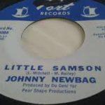 Johnny Newbag   Little Samson Northern Soul R&B