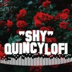 """Shy"" R&B Type Beat – With Vocals / Prod By ""QuincyLofi"